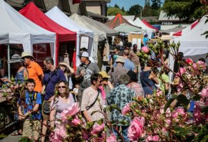 Crowds at Farmers Market, Salt Spring Island BC
