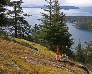 Sea Star Estates wine bottles on Mount Norman Pender Island BC