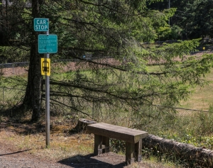 Car stop and bus stop signs with bench, Pender Island BC